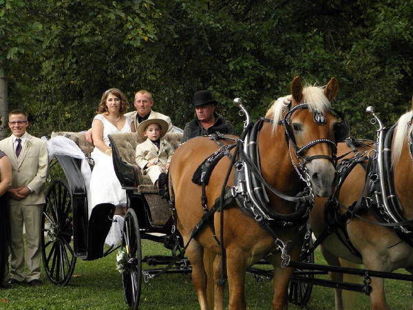 Carriage for Wedding